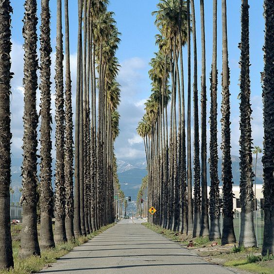 Famous Places In North California: 16 Best Things To Do Around Redlands Images On Pinterest