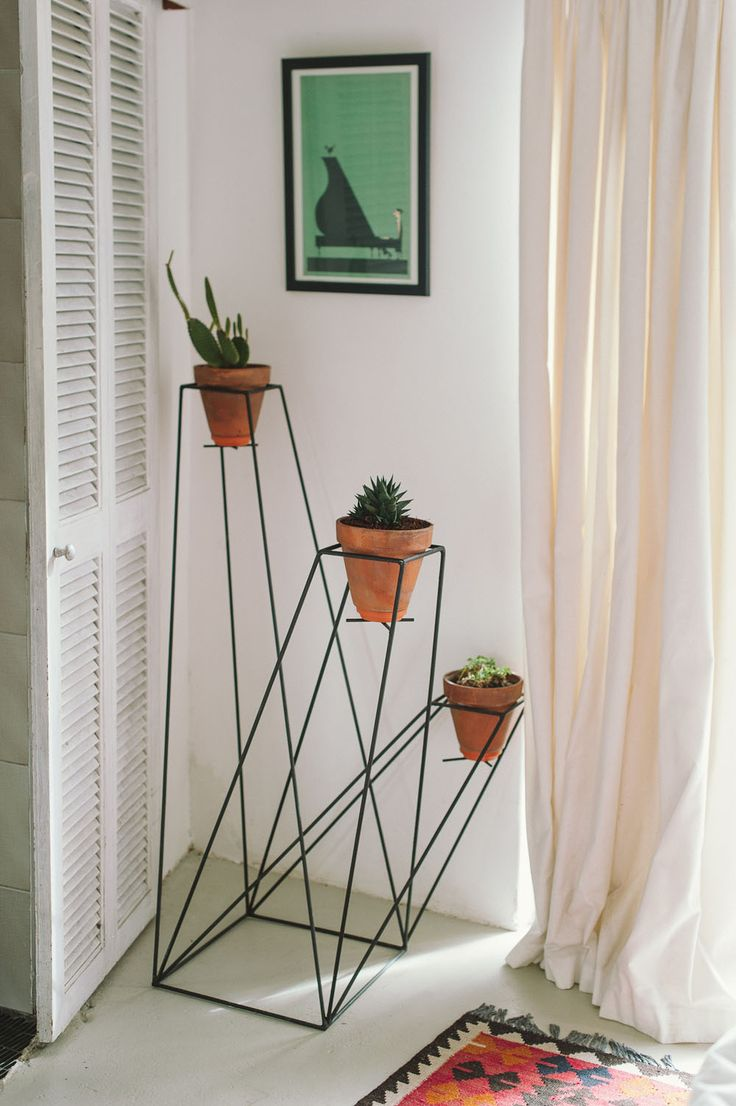 the Meissners, wireframe planters pots