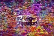 """New artwork for sale! - """" Ave Animals Animal Pond  by PixBreak Art """" - http://ift.tt/2v7CFnK"""