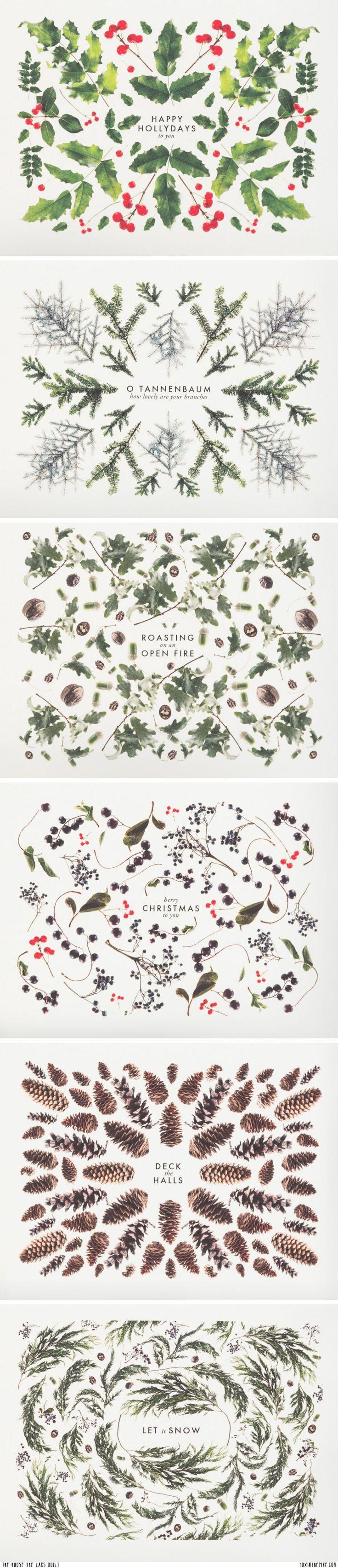 Winter greenery #horticultural_art #garden