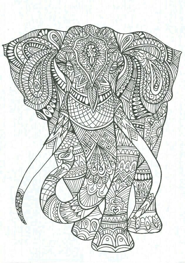 Free Coloring Page Adult Elephant Patterns A Big Full Of