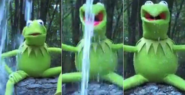 Desafio do balde de gelo arrecadou mais de 31 milhões de dólares; Kermit, dos Muppets encara o banho gelado