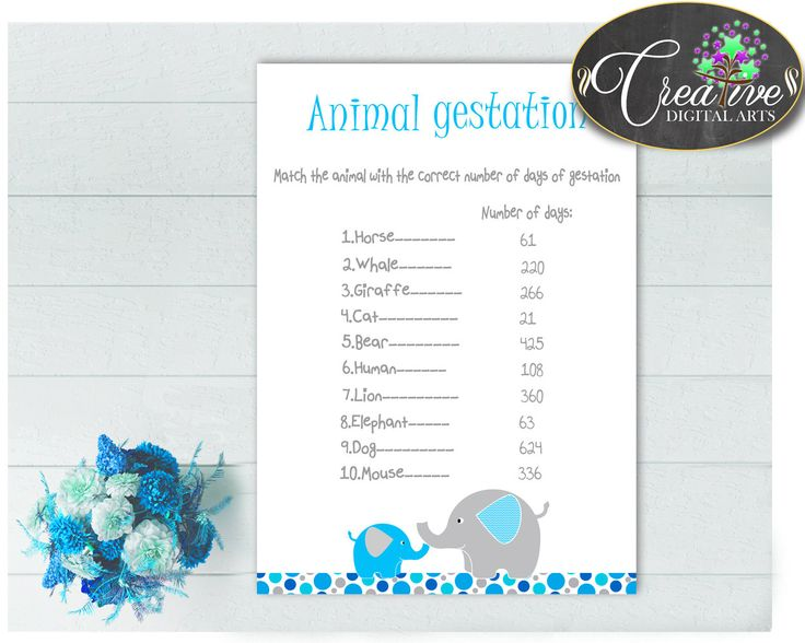 Baby Shower Boy ANIMAL GESTATION game with aqua blue and gray color elephant theme, digital files pdf jpg, instant download - ebl01 #babyshowerparty #babyshowerinvites