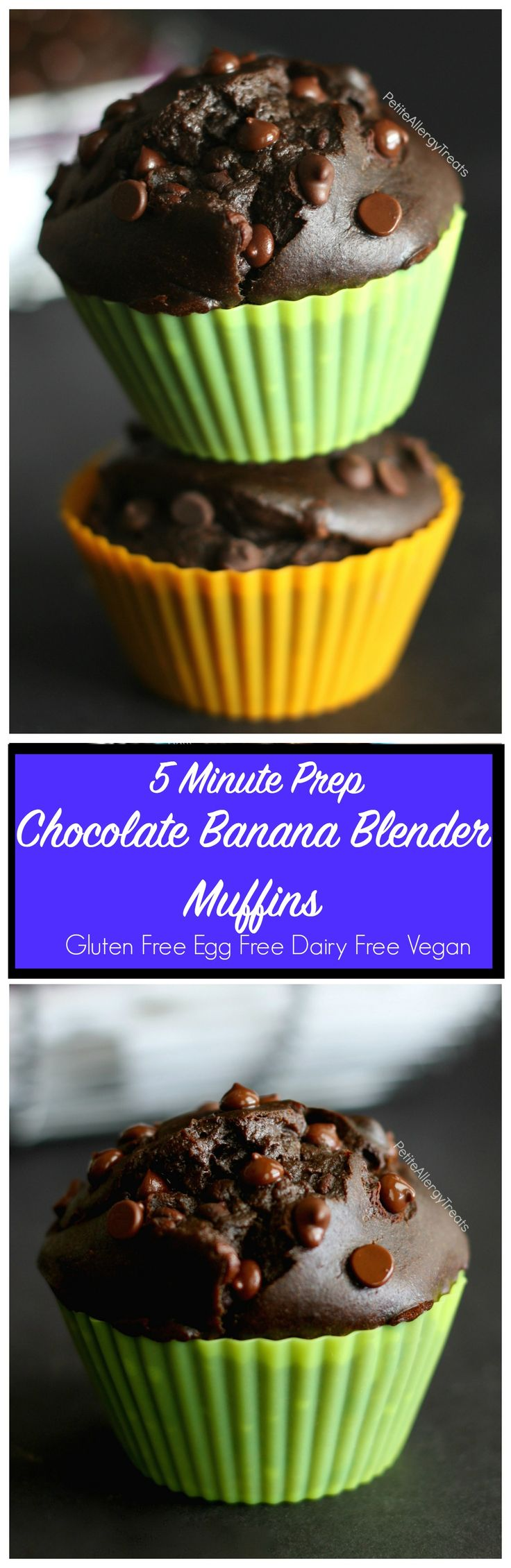 Gluten Free Blender Chocolate Banana Muffins Recipe (vegan) - Easy gluten free muffins packed with banana, avocado and seed butter. Egg free and dairy free. Food Allergy friendly.