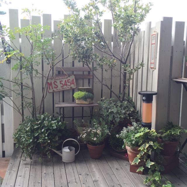 DIYフェンス/DIYウッドデッキ/DIY/多肉植物/古い物/IKEA…などのインテリア実例 - 2015-05-08 06:54:40 | RoomClip(ルームクリップ)