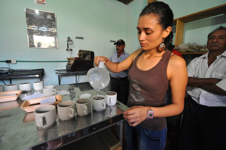 Cupping in Colombia