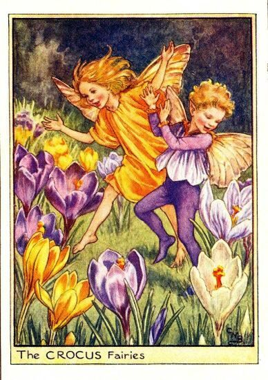 The Crocus Fairies Cicely Mary Barker