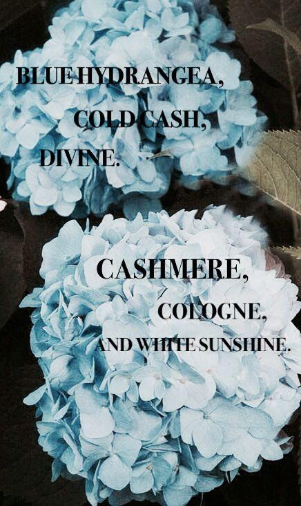 Lana Del Rey - Old Money _ Blue hydrangea, cold cash, divine, cashmere, cologne and white sunshine.