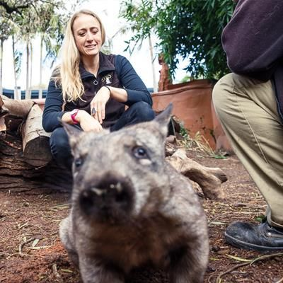 Dr Elisa Sparrow - Finalist in the Science Excellence Awards for her research work in Southern Hairy Nosed Wombat conservation. Vote for her every day in the people's choice. Voting ends 6th Aug.