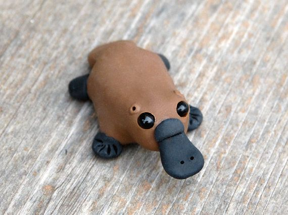 Hey, I found this really awesome Etsy listing at https://www.etsy.com/listing/128620395/tiny-platypus-handmade-miniature-polymer