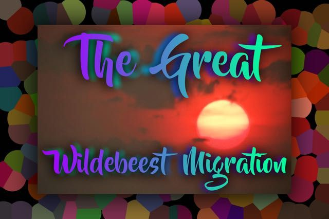 5 Facts About The Great Wildebeest Migration - http://exploramum.com/2017/09/5-facts-great-wildebeest-migration.html