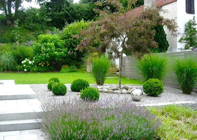 best 10+ sichtschutz pflanzen ideas on pinterest | sichtschutz, Gartenarbeit ideen