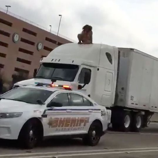 Naked Woman Dances Atop Giant Truck After Crash