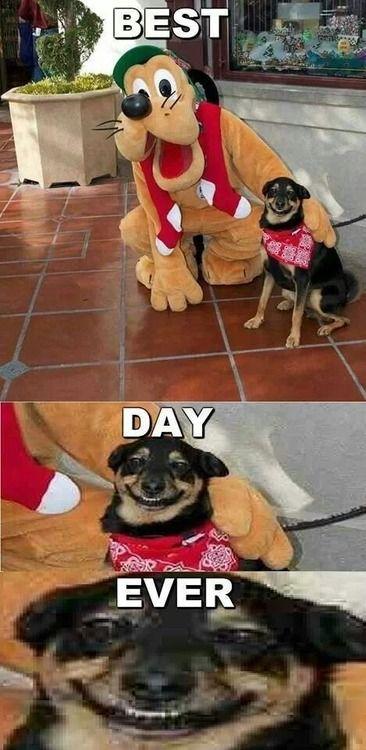 Hahahaha!!!! I'm laughing way to hard at this!!