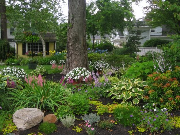 38 Homes That Turned Their Front Lawns Into Beautiful: Shade Garden With Color