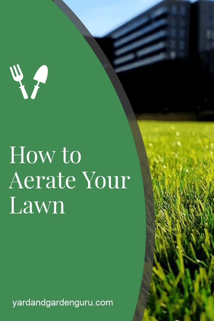 How And When To Aerate Lawn Organic Lawn Care Fall Lawn Care Lawn