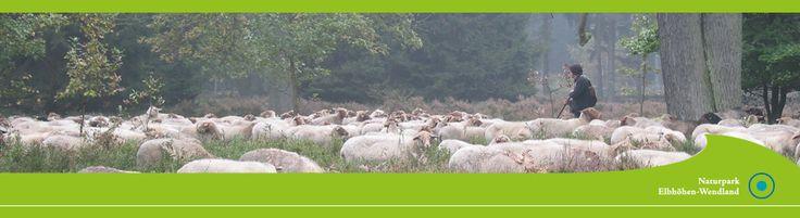 WENDLAND: Naturpark Elbhöhen-Wendland