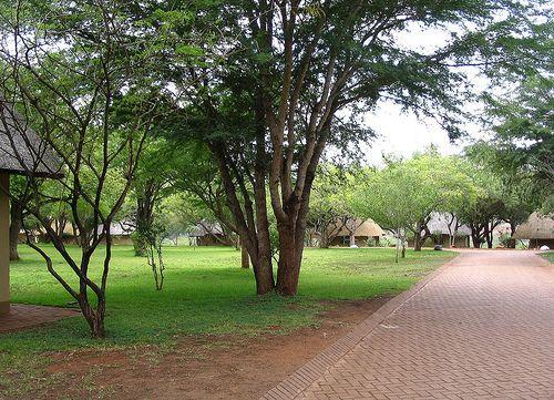 Satara Camp site in the Kruger Park