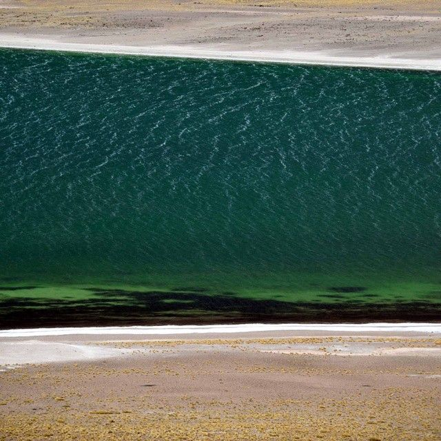 Altiplanic lagoon in Chile #atacama#altiplano#emerald#dessert#backpackers #observers #explorer #trip#nature#outdoor #andes #scenicview #stripes#stone#lagoon#water#patches #salt #lines#majesticviews #nationalgeographic #natgeo #nikonofficials #nikontop #yourshot#theworldgallery #nofilter