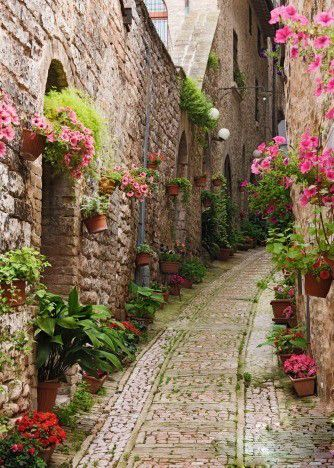 Alley in Giverny, France
