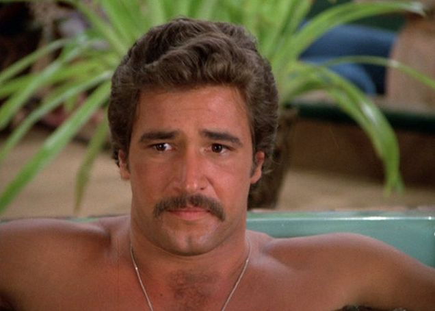 Is it any wonder that he was one of my earliest crushes as a kid in the #80s?  I didn't care about the storyline of the mystery.  I cared about Matt.  He even makes a mustache work somehow.  Shown: Matt Houston played by Lee Horsley. http://www.liketotally80s.com/matt-houston.html