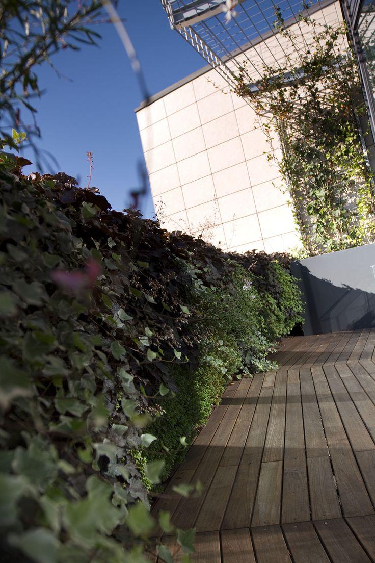 Oltre 1000 idee su progettazione del giardino su pinterest ...