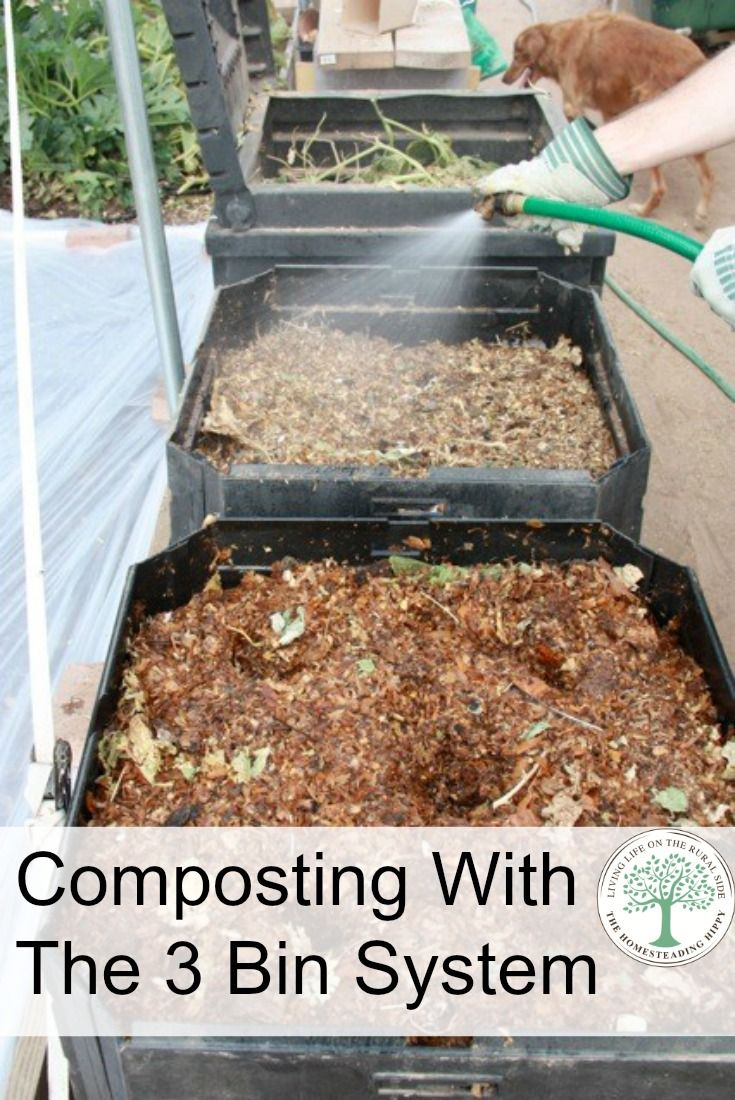 A good garden needs nutrients. You can get those nutrients from a great compost…