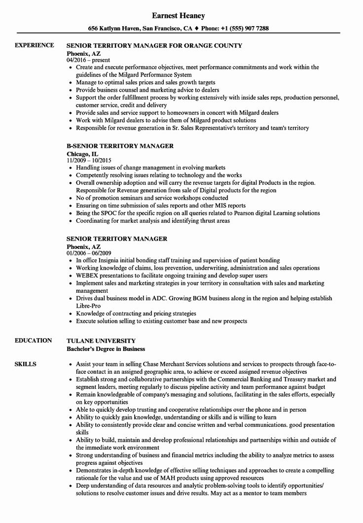 Best Of Senior Territory Manager Resume Samples in 2020