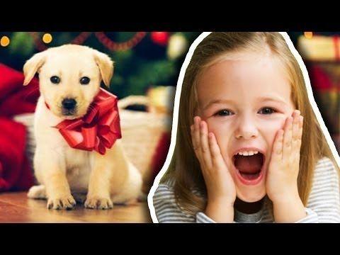 подарили щенка на рождество, милый щенок, эмоции, слезы радости, Никола Тесла