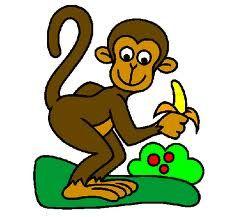 Marito e moglie vanno allo zoo. Davanti alla gabbia del gorilla, il marito scherza e dice:...