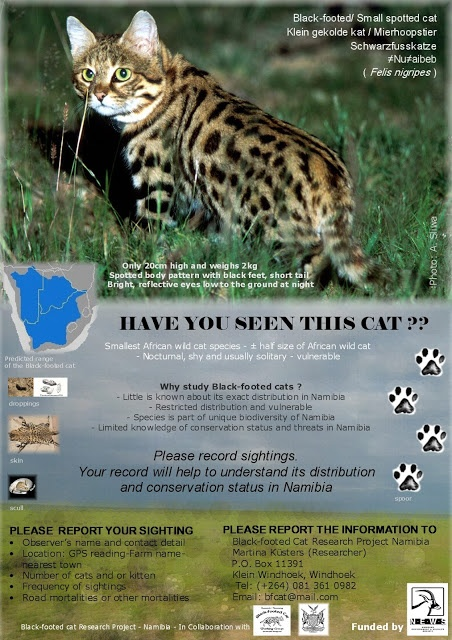The Namibian Environment & Wildlife Society is asking the