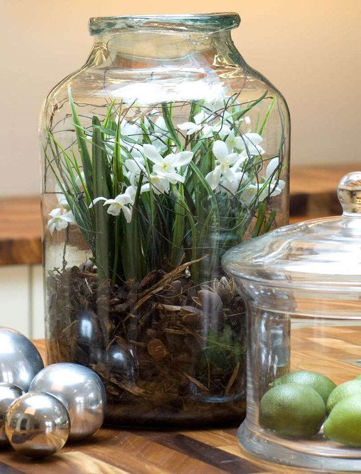 Snowdrops in a Pickle Jar -- ohmygosh my favorite flower, ever .... in a jar.