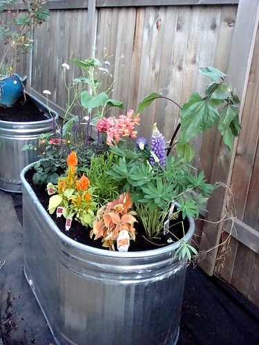 17 best images about diy galvanized stock tank planters garden on pinterest planters rain - Galvanized containers for gardening ...