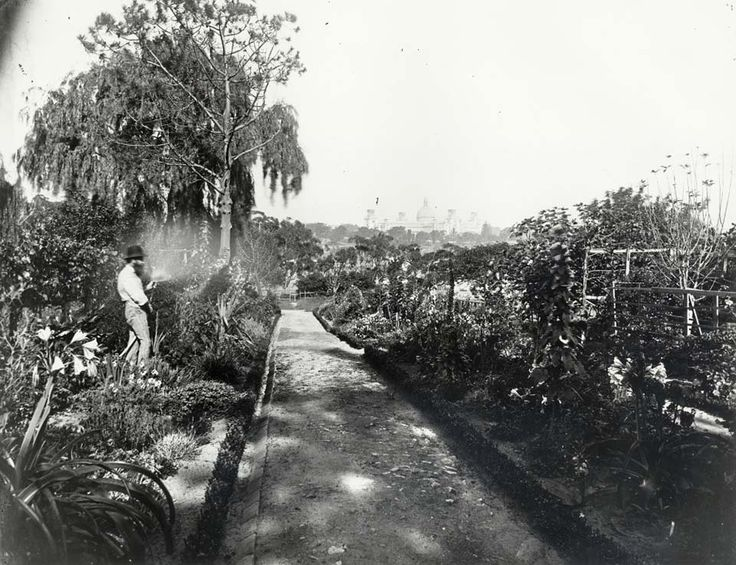 Gardener at work watering plants in the Royal Botanic Gardens in Sydney in c1880.Photo from Dictionary of Sydney.A♥W
