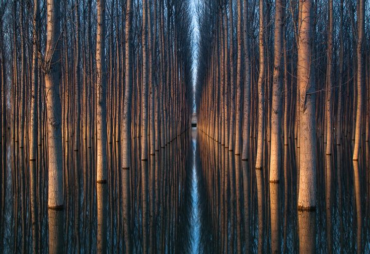 20фото, над эффектностью которых потрудилась сама природа