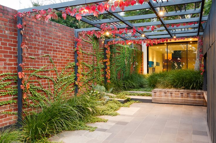 1000+ Images About Landscape By Design On Pinterest | Its Always Shade Screen And Sandra Bullock