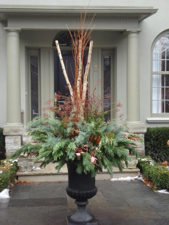 Woodland Christmas Trees