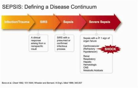 A good overview of sepsisSepsis Disease, Sepsis Overview, Sepsis Blood, 49 Sepsis Continum, Sepsis Treatments