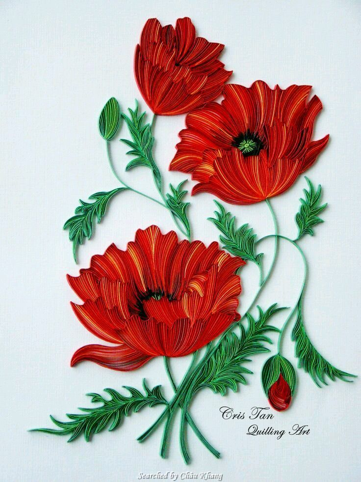 © Cris Tan- Quilled poppies pictures (Searched by Châu Khang)