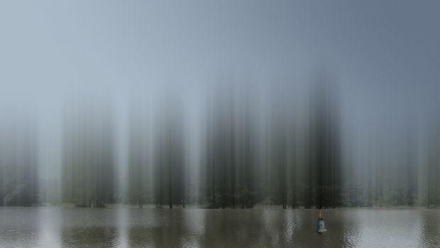 La mistica della natura esplorata da Ellen Jantzen