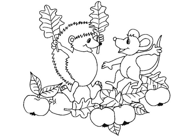 Ausmalbilder Igel 10 Ausmalbilder Tiere Fall Coloring Pages Apple Coloring Pages Christmas Coloring Pages