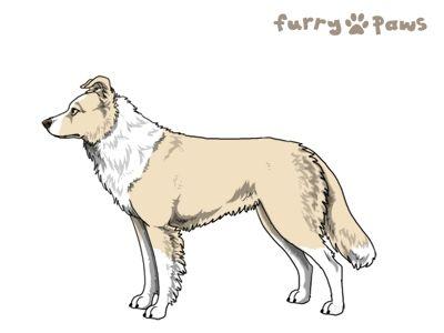 Furry Paws // WCH Kip's Deepholm [3xStm - 1.482] 6.4's Kennel