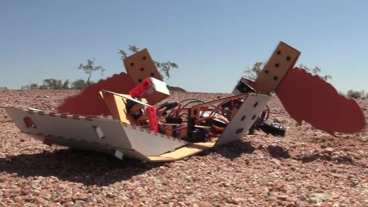 "C-Turtle: The landmine-detecting robot 'turtle' - ""The disposable C-Turtle is made from cardboard powered by a Raspberry Pi Zero computer and costs 50 ($65)."" http://ift.tt/2ultcGB"