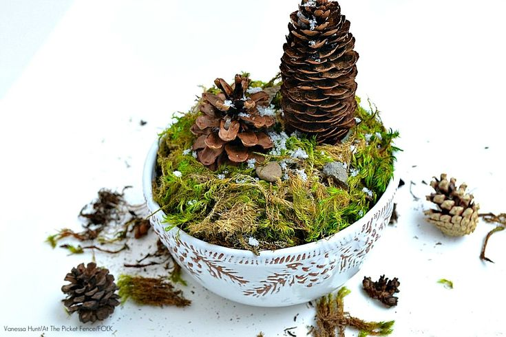 Simple winter decor ~ How to make a pine cone terrarium