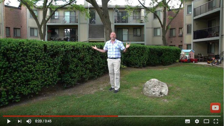 Ontree Onpoint w/Carson Arthur - Episode #4 - How trees can make you money #carsonarthur #hgtv #gta #ontree #treecareservices