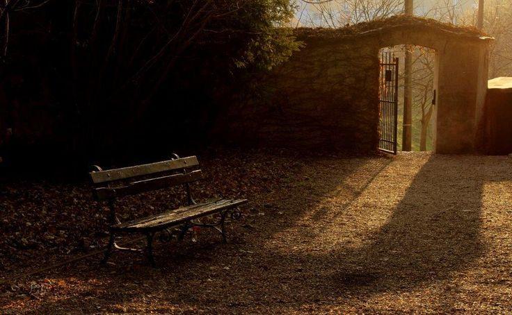 Dr. Pálffy István  Novemberi várakozás Lamberg-kastély parkjának egyik bejárata. Nagyszerű fények voltak néhány percig. Megpróbáltam a hangulatot rögzíteni. Mert ott, akkor különleges hangulat volt... Több kép Istvántól: www.facebook.com/palffydr/photos_albums