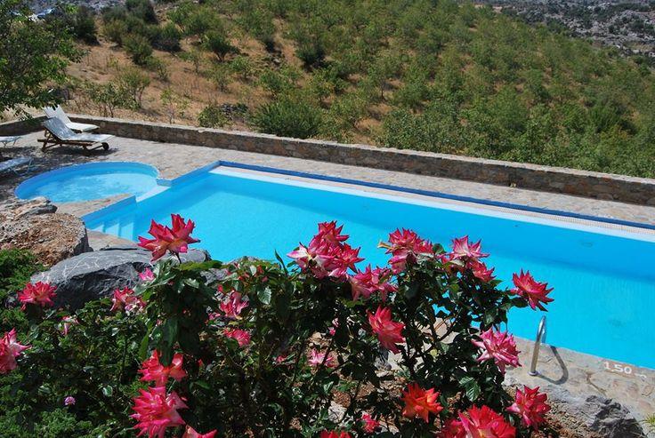 Beautiful exterior pool