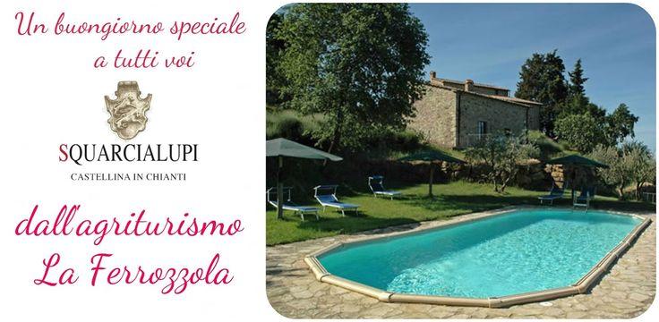 Relax in Chianti e panorama mozzafiato dal nostro agriturismo. E non solo...ecco i nostri #SERVIZI, scoprili qui:   http://www.laferrozzola.com/i…/agriturismo_piscina_siena.php #chianti #castellina #toscana #agriturismo #piscina #panorama #paesaggio