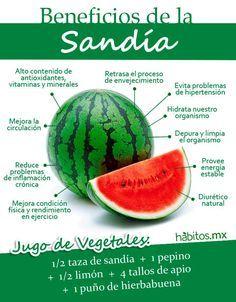 Hábitos Health Coaching | LOS BENEFICIOS DE LA DELICIOSA SANDÍA Si tienes problemas de sobrepeso, visita también www.bajadepesoya.areb2u.com