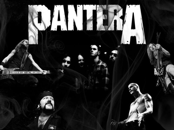 Pantera HD Wallpapers Backgrounds Wallpaper